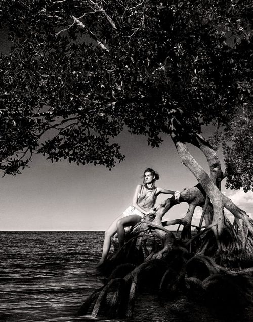 Fine Art Photography Michael David Adams Photographer Limited Edition Fashion Mangrove